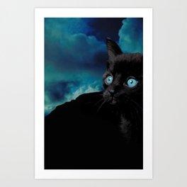 Cute black kitten cat photography photo collage montage Art Print