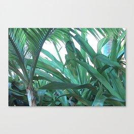 jungle.rules Canvas Print