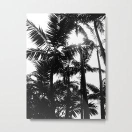 Filter Metal Print