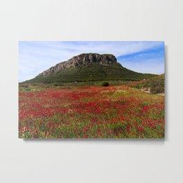 Red Poppy Fields Amid the Black Hills Metal Print