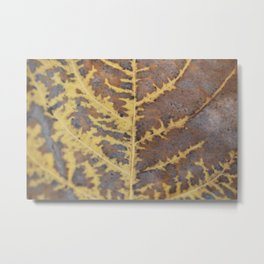Leaf Macro Abstract Metal Print