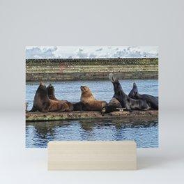 Sea Lions sunning on the docks during the winter Mini Art Print