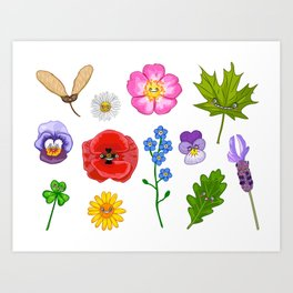 Nature collection Art Print