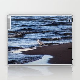Seagulll by the Waves Laptop & iPad Skin