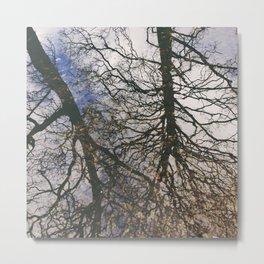 tree river reflections, grasmere, lake district, uk Metal Print