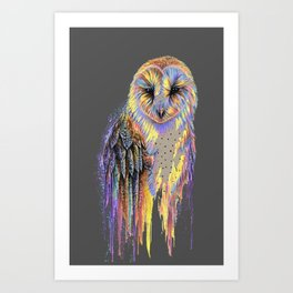 Colorful Owl Dark Background Art Print