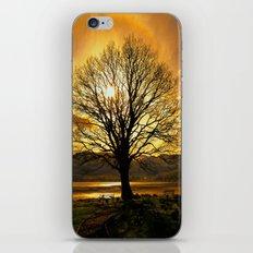 Tree of Fire iPhone & iPod Skin