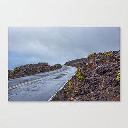 The Endless Road Canvas Print