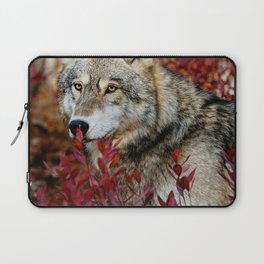 Wolf in red foliage Laptop Sleeve