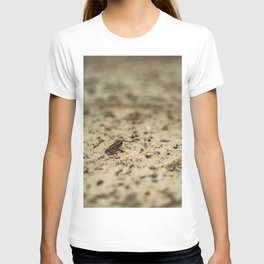 The Second Micro Toad on the Road T-shirt