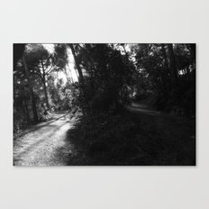 moral  bifurcation Canvas Print