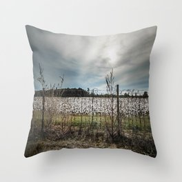 Florida Cotton Fields  Throw Pillow