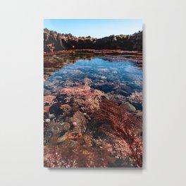 colorful ocean tide pools Metal Print