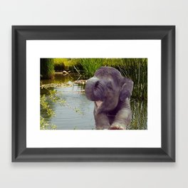 Elephant and Water Framed Art Print