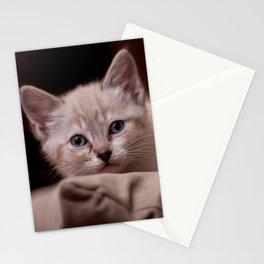 Little Misha Stationery Cards