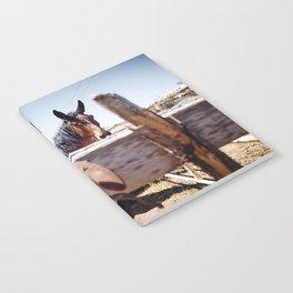 Horsehoe Blur Notebook