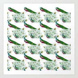 Peacock pattern Art Print