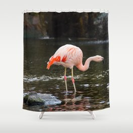 Pink on Two Legs Shower Curtain