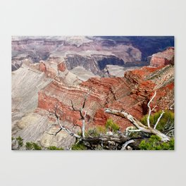 Sedimentary Red Canvas Print