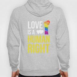 Love Is A Human Right & Gay Lesbian Pride Gift March & LGBT LGBTQ Apparel Hoody