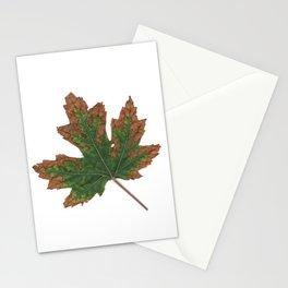 October Specimen Stationery Cards