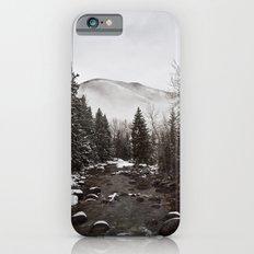 Mid Winter iPhone 6s Slim Case