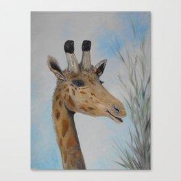 Giraffe Smile Canvas Print