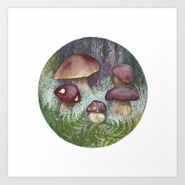 Porcini Mushrooms Art Print