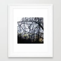 forrest Framed Art Prints featuring Forrest by SuzanaStudio