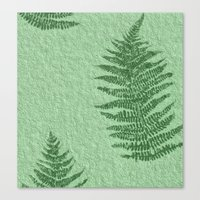 fern Canvas Prints featuring Fern by Mr and Mrs Quirynen