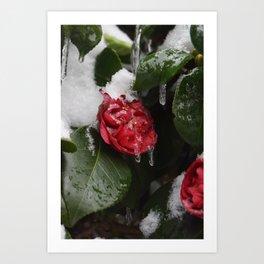 Frozen in Time Art Print
