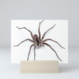 Creepy Spider Mini Art Print