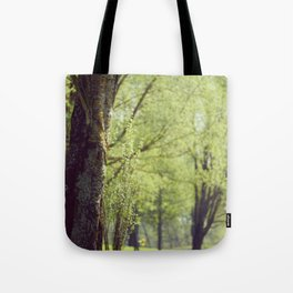 Trees in a Park Tote Bag