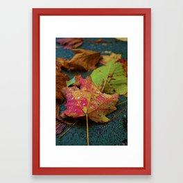 Autumn Leaf Framed Art Print