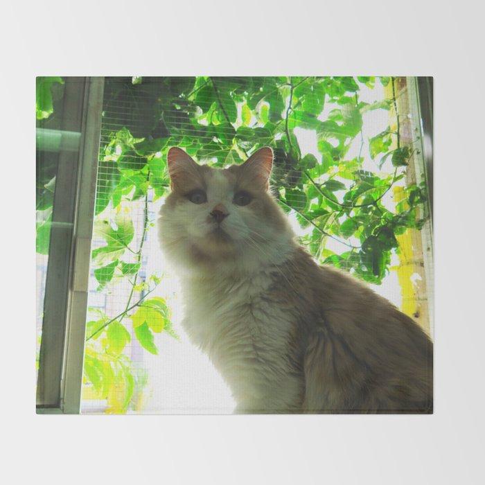 Marmalade Window Kitty Throw Blanket
