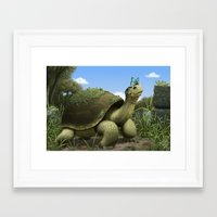tortoise Framed Art Prints featuring Tortoise by Andrew McIntosh