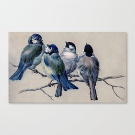 Vintage Cute Blue Birds on Branch Canvas Print