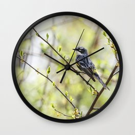 Yellow Rumped Warbler  Wall Clock