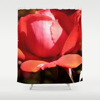 jewish Shower Curtains featuring The Subject is Roses - 101 by Brown Eyed Lady