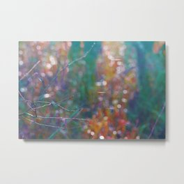 Divuse light specially in autumn Metal Print