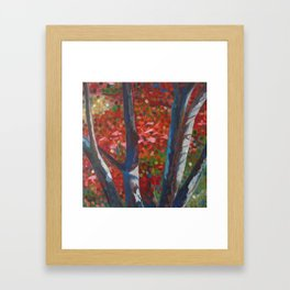 Spacious Presence Framed Art Print