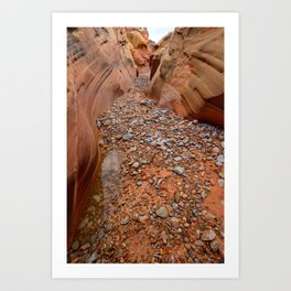 After the Rain - 5, Valley_of_Fire Canyon, Nevada Art Print