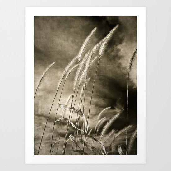 ecology {no.6 Art Print