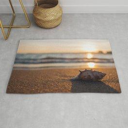 Seashore Seashell Rug