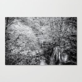 North Fork Silver Creek bw Canvas Print