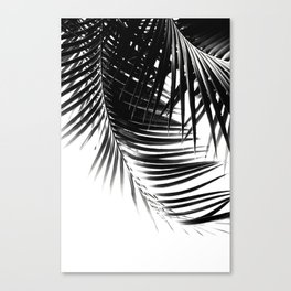 Palm Leaves Black & White Vibes #1 #tropical #decor #art #society6 Canvas Print