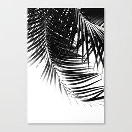 Palm Leaves Black & White Vibes #1 #tropical #decor #art #society6 Canvas Print