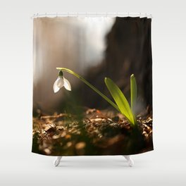 Light In Shade. Snowdrop Flower Bathing In Sun #decor #society6 Shower Curtain