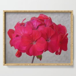 Red Geranium Against Adobe Wall Photograph Serving Tray