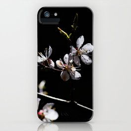Sakura flowers on black 02 iPhone Case